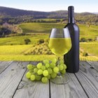 The History of Winemaking in Virginia